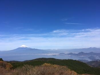 daruma_fuji.jpg